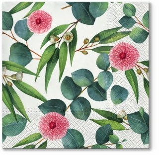 Serviete za decoupage Leaves of Eucalyptus - 1 kos