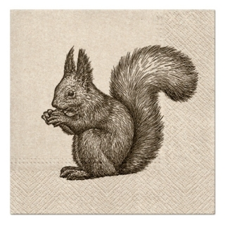 Serviete za decoupage Squirrel - 1 kos